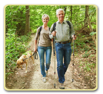 Brisk Walking is Good for Your Brain